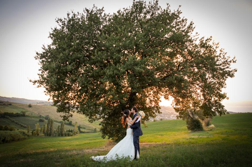Wedding Matrimonio Edoardo  Eleonora